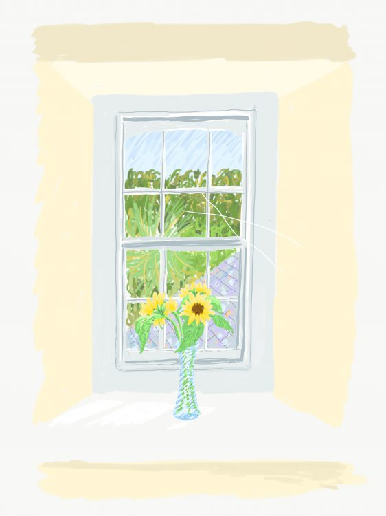 Cornish window still life by Simon Lewis
